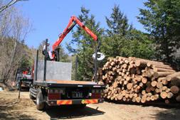林業用クレーン付き運搬車